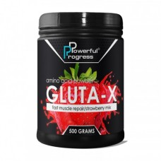 Powerful Progress Gluta-X 500 g